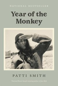 bokomslag Year of the Monkey