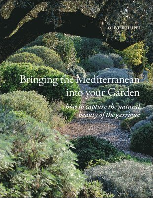 bokomslag Bringing the Mediterranean into your Garden: How to Capture the Natural Beauty of the Garrigue