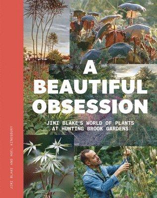 bokomslag A Beautiful Obsession: Jimi Blake's World of Plants at Hunting Brook Gardens