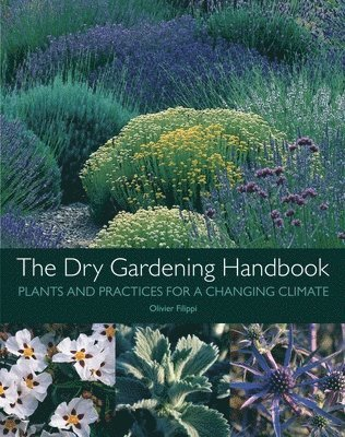 bokomslag The Dry Gardening Handbook
