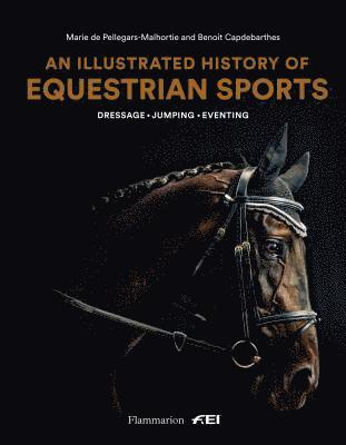 bokomslag An Illustrated History of Equestrian Sports: Dressage, Jumping, Eventing