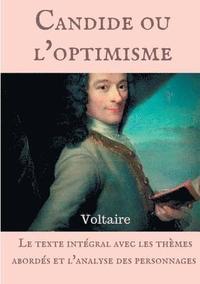 bokomslag Voltaire