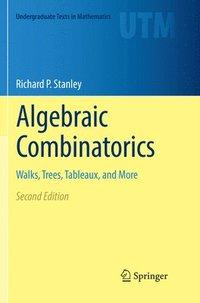 bokomslag Algebraic Combinatorics