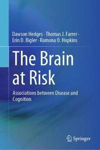 bokomslag The Brain at Risk