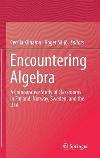 bokomslag Encountering Algebra
