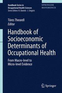 bokomslag Handbook of Socioeconomic Determinants of Occupational Health