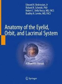 bokomslag Anatomy of the Eyelid, Orbit, and Lacrimal System