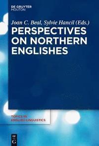 bokomslag Perspectives on Northern Englishes