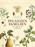 bokomslag Pflanzenfamilien