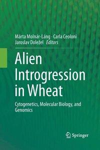 bokomslag Alien Introgression in Wheat