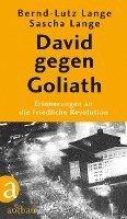 bokomslag David gegen Goliath