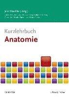 bokomslag Kurzlehrbuch Anatomie