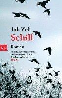 bokomslag Schilf