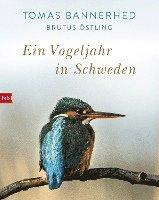 bokomslag Ein Vogeljahr in Schweden