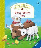 bokomslag Meine allerersten Minutengeschichten: Meine liebsten Tiere