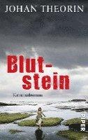 bokomslag Blutstein
