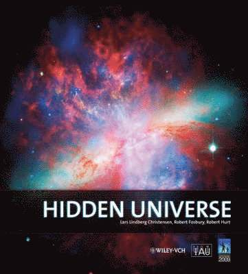 bokomslag Hidden Universe