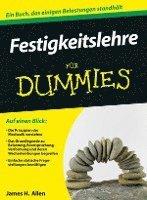 bokomslag Festigkeitslehre fur Dummies