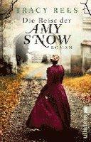 bokomslag Die Reise der Amy Snow
