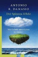 bokomslag Der Spinoza-Effekt