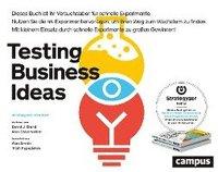 bokomslag Testing Business Ideas