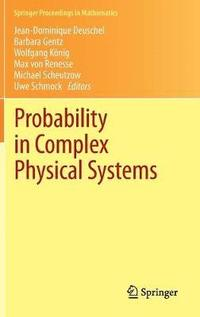 bokomslag Probability in Complex Physical Systems