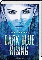 bokomslag Dark Blue Rising (Bd. 1)