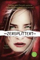 bokomslag Zersplittert