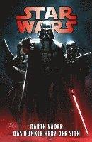 bokomslag Star Wars Comics: Darth Vader - Das dunkle Herz der Sith