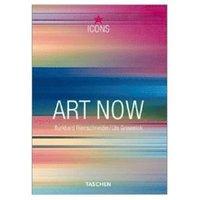bokomslag Art Now