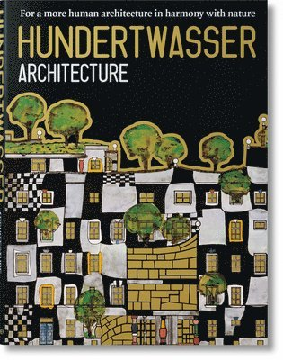 bokomslag Hundertwasser. Architecture
