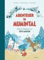 bokomslag Abenteuer im Mumintal