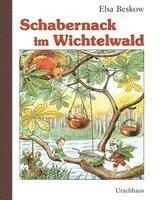 bokomslag Schabernack im wichtelwald