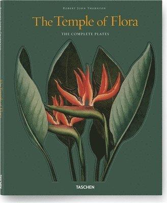 bokomslag Temple of Flora