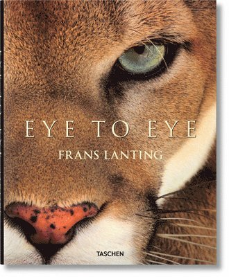 bokomslag Lanting: Eye to Eye