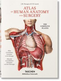 bokomslag Jean Marc Bourgery. Atlas of Human Anatomy and Surgery