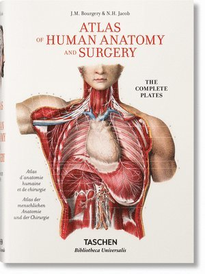 bokomslag Jean Marc Bourgery. Atlas of Human Anatomy and Surgery