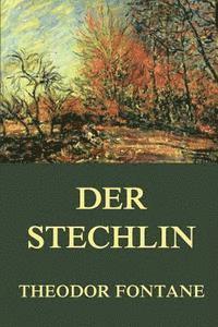 bokomslag Der Stechlin