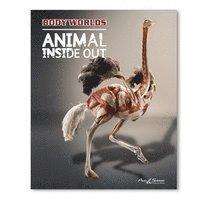 bokomslag Body Worlds - ANIMAL INSIDE OUT