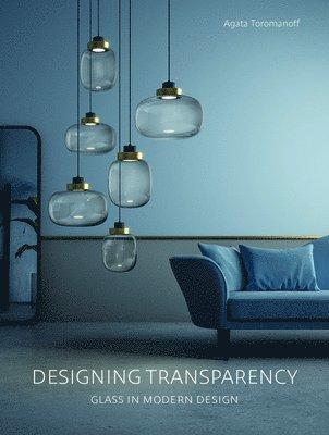 bokomslag Designing Transparency