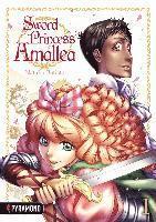 bokomslag Sword Princess Amaltea 1