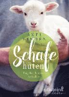 bokomslag Schafe hüten