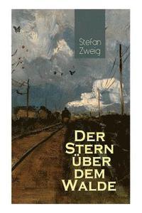 bokomslag Der Stern  ber dem Walde