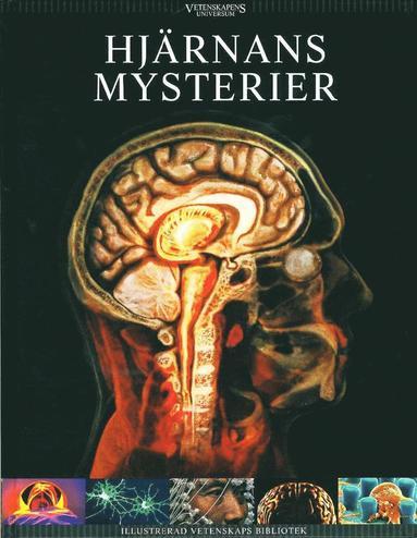 bokomslag Hjärnans mysterier