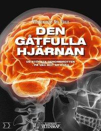 bokomslag Den gåtfulla hjärnan