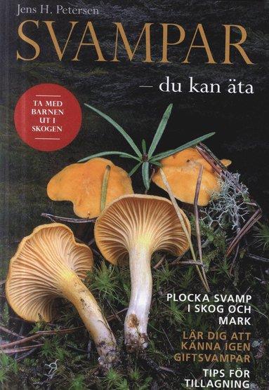 bokomslag Svampar : du kan äta