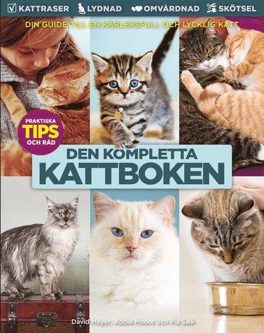 bokomslag Kattboken : från A till Ö