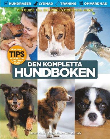 bokomslag Den kompletta hundboken : en lydig hund är en lycklig hund