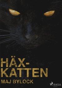 bokomslag Häxkatten