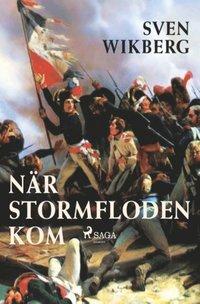 bokomslag När stormfloden kom